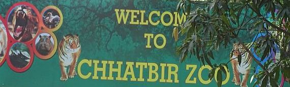 Chhatbir Zoo will become a hotspot for adventure enthusiasts